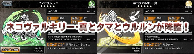【コラボクエスト】ネコヴァルキリー・真とタマとウルルンが降臨!